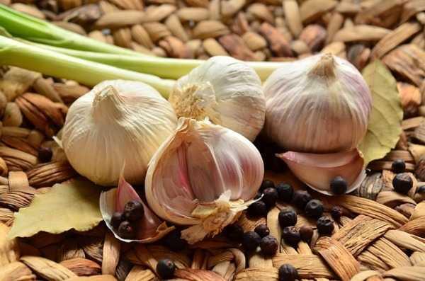 bio sklep ze zdrową żywnością Tobio (3)